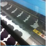 數位膠模轉印-全彩