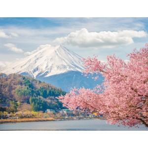 東京箱根富士山卡奇卡奇纜車溫泉5日