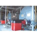 TP-WNS系列燃油(氣)蒸汽、熱水鍋爐