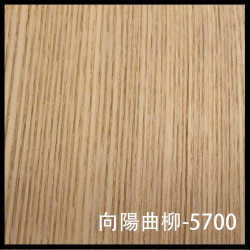 向陽曲柳-5700-1