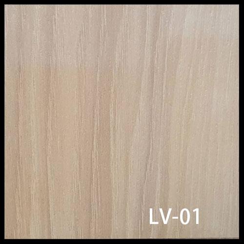 LV-01-1