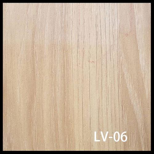 LV-06-1