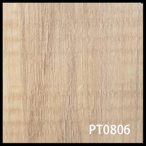 PT0806-1