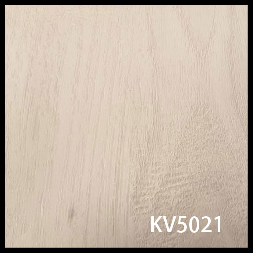 KV5021-1