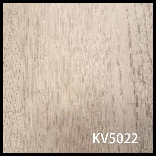 KV5022-1