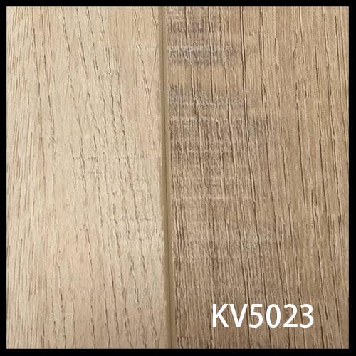 KV5023-1
