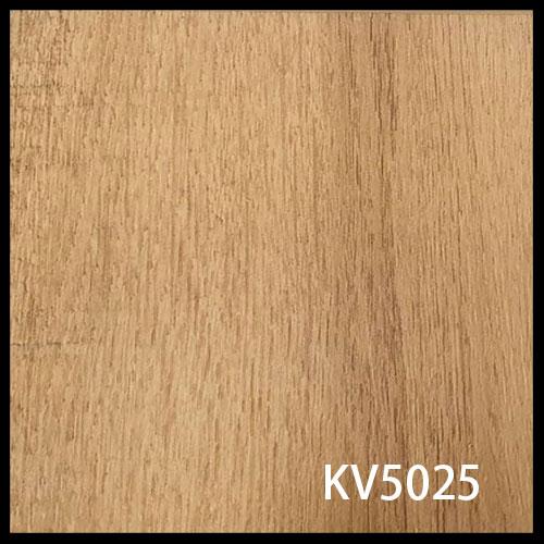 KV5025-1