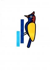 啄木鳥環保科技有限公司